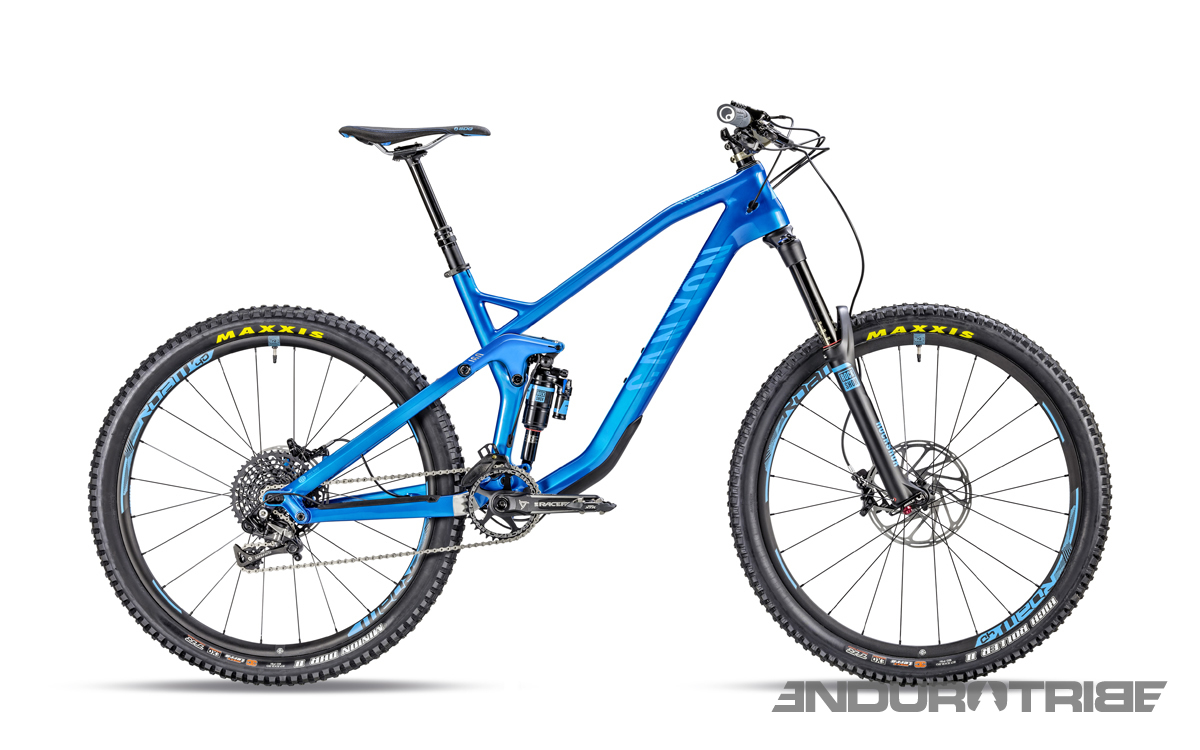 Strive CF 8.0 Race electric blue
